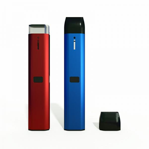 E-CIG VAPOR SOLD HERE TWO(2) WINDLESS FEATHER FLAG KITS W/POLE & GROUND SPIKES #2 image